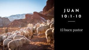 Culto del 3 de mayo de 2020: El buen pastor