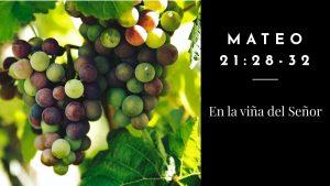 """Culto del domingo 27 de septiembre: """"En la viña del Señor"""""""